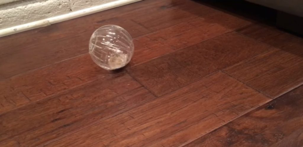 Прозрачный шарик